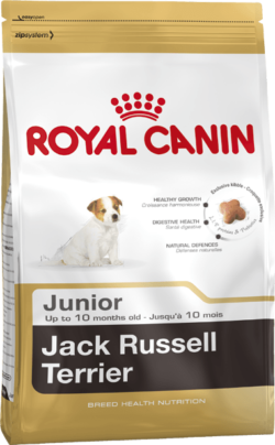 Royal Canin – Jack Russell Junior