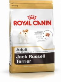 Royal Canin – Jack Russell Adult