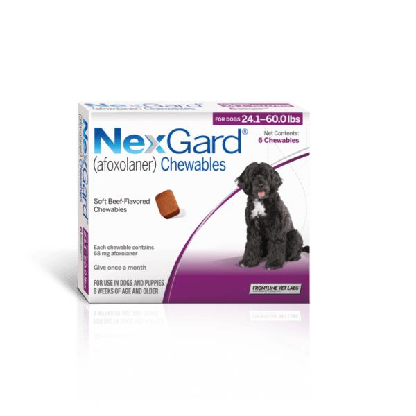 NexGard – Chewable Tick and Flea Prevention for Large Dogs (10 – 25 kg)