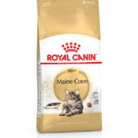 Royal Canin – Adult Maine Coon