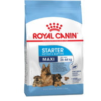 Royal Canin – Maxi Starter Mother and Baby dog